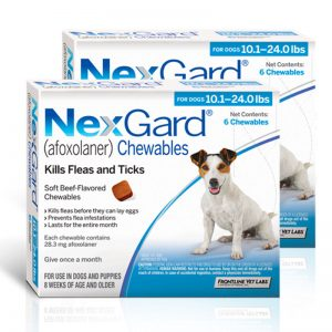 nexgard_for_dog_10_1_24_lbs_12pack