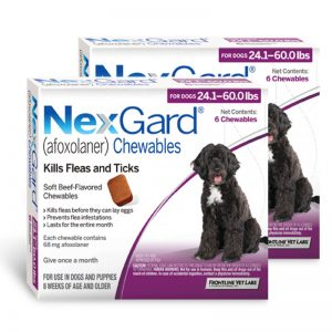 nexgard_for_dog_24_1_60