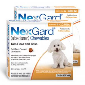 nexgard for dog 4- 10 lbs