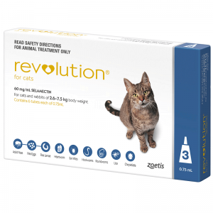 revolution-cat-blue_3